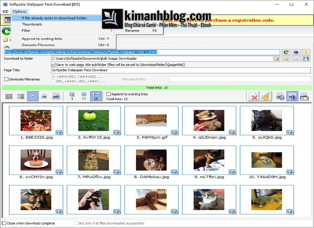 bulk image downloader full portable